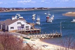Island Inn on Martha's Vineyard, pet friendly hotels in Nantucket, Nantucket dog friendly hotels