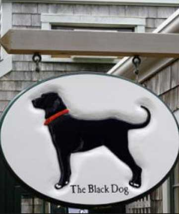 dog friendly nantucket